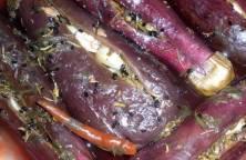 aubergines_turshi